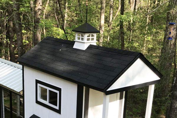cupolas for backyard chicken coops