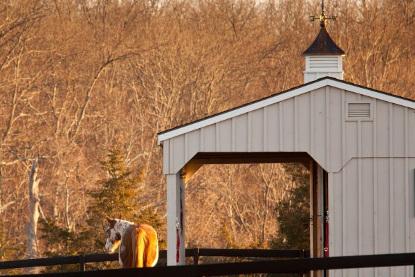 Horse barn Cupolas for Your Horse barn in PA, MD, DE, NH